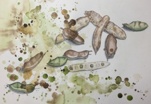 Kayla, Seeds and Beans, Mixed media, A2.